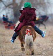 Ett barn som rider på en liten ponny.  Vadim Ghirda / TT NYHETSBYRÅN