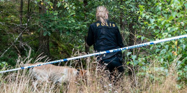 Polisen söker i området kring den plats utanför Markaryd där Gert-Inge Bertinsson hittades död. Arkivbild. Johan Nilsson/TT / TT NYHETSBYRÅN