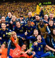 Sverige jublar. PETTER ARVIDSON / BILDBYRÅN