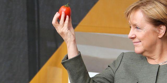 Angela Merkel håller en tomat under ett kampanjmöte i Lingen, 13 september. MOHSSEN ASSANIMOGHADDAM / dpa