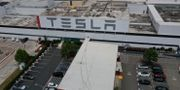Teslas fabrik i Fremont, Kalifornien. JUSTIN SULLIVAN / TT NYHETSBYRÅN