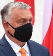 Polens Mateusz Morawiecki och Ungerns Viktor Orban.  Czarek Sokolowski / TT NYHETSBYRÅN