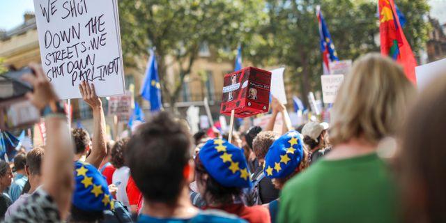 Brexitprotester Vudi Xhymshiti / TT NYHETSBYRÅN