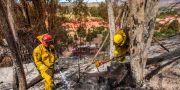 Brandmän arbetar med efterläckning. APU GOMES / AFP