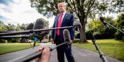 Donald Trump. Andrew Harnik / TT NYHETSBYRÅN/ NTB Scanpix