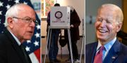 Bernie Sanders/Väljare i Illinois/Joe Biden TT