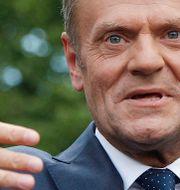 Donald Tusk. Czarek Sokolowski / TT NYHETSBYRÅN/ NTB Scanpix