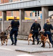 Poliser med hundar på plats vid Skånes universitetssjukhus i Lund.  TT / TT NYHETSBYRÅN