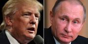 Donald Trump, Vladimir Putin. TT