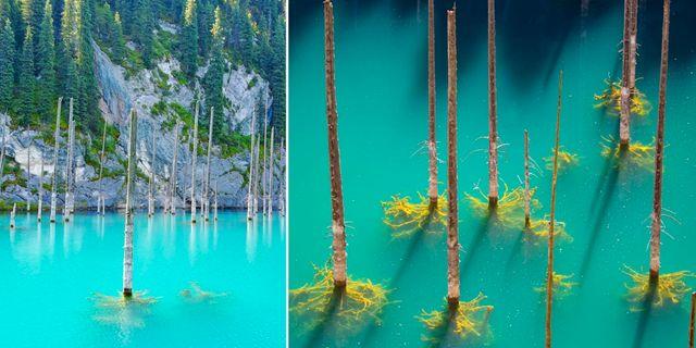 Sjön Kaindy lockar vandrare och dykare från världens alla hörn. Thinkstock