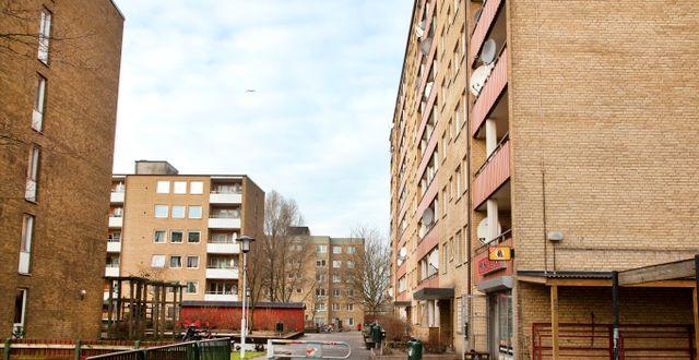 """MalmöBild / TT"""" / TT NYHETSBYRÅN"""