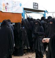 Bild från al-Hol-lägret. Maya Alleruzzo / TT NYHETSBYRÅN