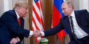 Trump och Putin  Pablo Martinez Monsivais / TT NYHETSBYRÅN/ NTB Scanpix