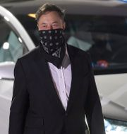 Arkivbild: Elon Musk, vd för Tesla.  John Raoux / TT NYHETSBYRÅN