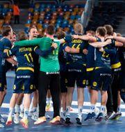 Svenska spelarna firar. MATHIAS BERGELD / BILDBYRÅN