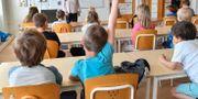 Svensk skola är ett av ämnena på dagens ledarsidor.  Jonas Ekströmer/TT / TT NYHETSBYRÅN