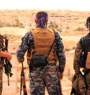 Stridande för Syrian Democratic Forces vid staden Tabqa, Syrien. Uncredited / TT NYHETSBYRÅN