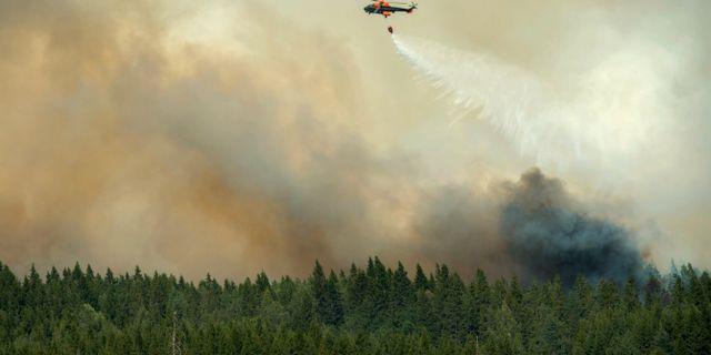 Skogsbränderna i Västmanland 2014.  FREDRIK SANDBERG / TT / TT NYHETSBYRÅN