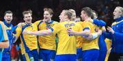 Sverige jublar efter segern mot Vitryssland. Fredrik Sandberg/TT / TT NYHETSBYRÅN