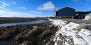 Bild på smältande tundra i Quinhagak i Alaska.  MARK RALSTON / AFP