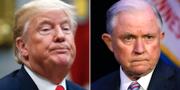 Donald Trump/Jeff Sessions TT