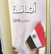 Egyptier boende i Kuwait röstar.  YASSER AL-ZAYYAT / AFP