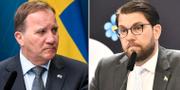 Stefan Löfven (S) och Jimmie Åkesson (SD) TT