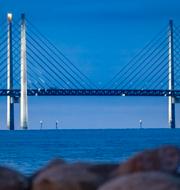Nooshi Dadgostar och Öresundsbron. TT