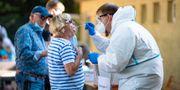 Virusprovtagning i Tyskland. Guido Kirchner / TT NYHETSBYRÅN