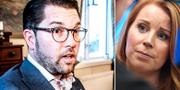 Jimmie Åkesson (SD) och Annie Lööf (C) TT