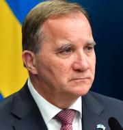 Statsminister Stefan Löfven/Lars Stjernkvist.  TT.