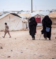 Två kvinnor och ett barn i al-Hol-lägret i Syrien, som bland annat rymmer personer med koppling till terrorgruppen IS. Baderkhan Ahmad / TT NYHETSBYRÅN