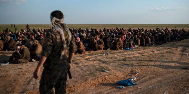 USA-stödda SDF-soldater bevakar IS-fångar i östra Syrien Felipe Dana / TT NYHETSBYRÅN/ NTB Scanpix