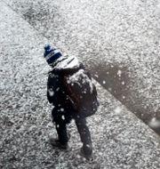 En pojke i snön, illustrationsbild. Hasse Holmberg / TT / TT NYHETSBYRÅN