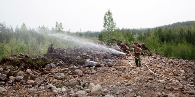 Skogsbrand. TT / TT NYHETSBYRÅN