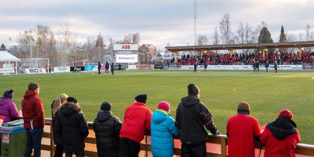 Piteås publik i samband med en match före pandemin. OLA WESTERBERG / BILDBYRÅN