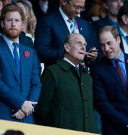 Prinsarna Harry, Philip och William vid Rugby World Cup i London 2015/Arkivbild Alastair Grant / TT NYHETSBYRÅN