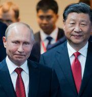 Arkivbild: Rysslands och Kinas ledare Vladimir Putin och Xi Jinping.  Dmitri Lovetsky / TT NYHETSBYRÅN