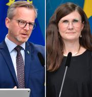 Lena Hallengren, Mikael Damberg, Märta Stenevi och Morgan Johansson/Arkivbilder TT
