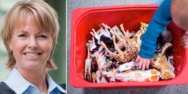 Christina Rudén, professor i regulatorisk toxikologi vid Stockholms universitet till vänster. Plastleksaker till höger.  Eva Dalin  / TT