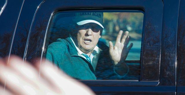 Donald Trump. Steve Helber / TT NYHETSBYRÅN