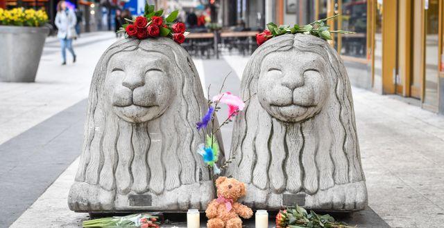 Blommor på Drottninggatans lejon dagar efter terrorrådet 2017.  Jonas Ekströmer/TT / TT NYHETSBYRÅN