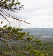 Arkivbild: Vindkraftverk ses från berget Kalahatten i Piteå kommun Helena Landstedt/TT / TT NYHETSBYRÅN