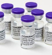 Pfizers vaccin mot covid-19 Claudio Bresciani / TT / TT NYHETSBYRÅN