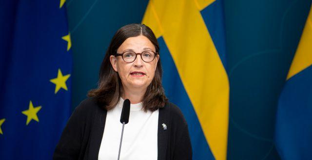 Ekström. Arkivbild.  Pontus Lundahl/TT / TT NYHETSBYRÅN