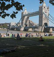 London. Tony Hicks / TT NYHETSBYRÅN