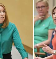 Det hettade till mellan Annie Lööf och Ebba Busch Thor i onsdagens debatt i riksdagen. TT