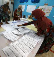 Valarbetare räknar röster efter valet.  Anis Belghoul / TT NYHETSBYRÅN