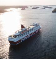 Viking Line-fartyget Amorella. Arkivbild. Fredrik Sandberg/TT / TT NYHETSBYRÅN