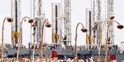 Amerikansk oljeproduktion i Dickinson, North Dakota. Arkivbild. Andrew Cullen / TT NYHETSBYRÅN